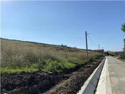Teren 4.65ha intravilan asfalt Tomesti - 4km Fiterman Pharma